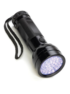 Ultraviolet LED Mini Flashlight