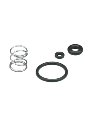 Paraplate Wand Valve Seal Kit - Without Stem